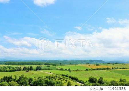 北海道 青空と広大な大地 41401528
