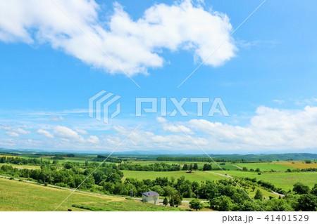 北海道 青空と広大な大地 41401529