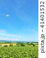 青空 空 丘の写真 41401532