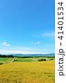 空 丘 畑の写真 41401534