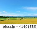 空 丘 畑の写真 41401535