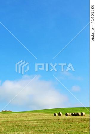 北海道 青空と大地の牧草ロール 41401536