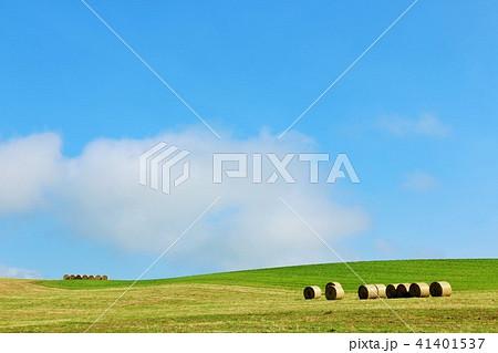 北海道 青空と大地の牧草ロール 41401537