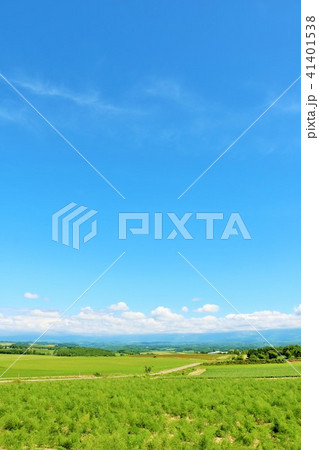北海道 夏の青空と美瑛の大地 41401538