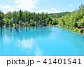 池 湖畔 森の写真 41401541