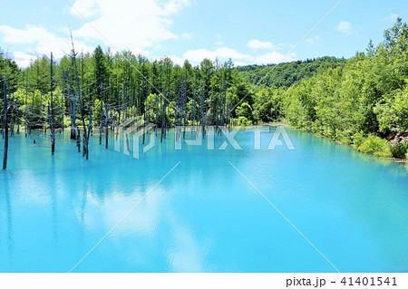 北海道 青空の青い池 41401541