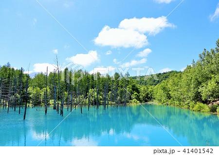 北海道 青空の青い池 41401542