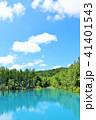 池 湖畔 森の写真 41401543