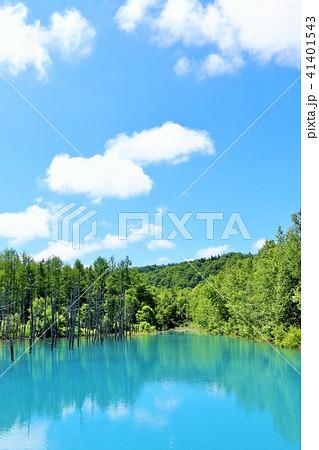 北海道 青空の青い池 41401543