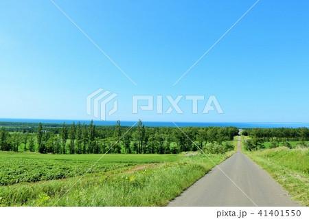 北海道 青空の大地とオホーツク海 41401550