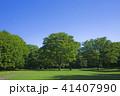公園 芝生 木々の写真 41407990