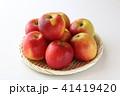 フルーツ 果物 林檎の写真 41419420