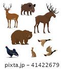 動物 鳥 ワイルドのイラスト 41422679