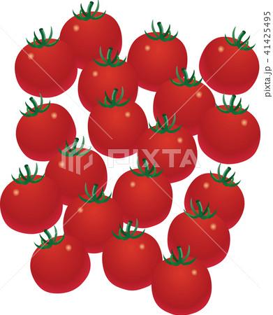 ミニトマト 41425495