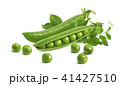 Fresh green split pod and peas isolated on white  41427510
