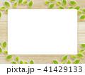 葉 木目 枠のイラスト 41429133