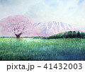 小岩井農場の1本桜 小岩井農場 1本桜 41432003