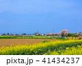 郡川 風景 桜の写真 41434237
