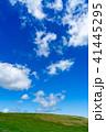 高原 美ヶ原高原 初夏の写真 41445295