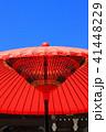 赤 傘 赤色の写真 41448229
