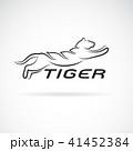 タイガー トラ 虎のイラスト 41452384