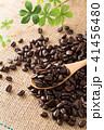 コーヒー豆 豆 珈琲豆の写真 41456480
