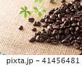 コーヒー豆 豆 珈琲豆の写真 41456481
