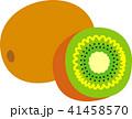 キウイフルーツ 41458570