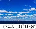 東京湾 海 青空の写真 41463495