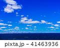 東京湾 海 青空の写真 41463936