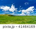 高原 美ヶ原高原 初夏の写真 41464169