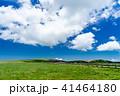 高原 美ヶ原高原 初夏の写真 41464180