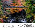 小戸名渓谷 渓谷 川の写真 41476051