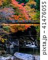 小戸名渓谷 渓谷 川の写真 41476055