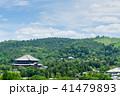 奈良県庁屋上より 41479893