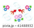 泳ぐ 金魚 波紋のイラスト 41488932