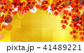 紅葉 秋 菊のイラスト 41489221