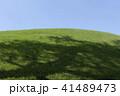 芝生の丘 41489473