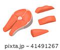ベクター サカナ 魚のイラスト 41491267