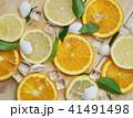 Close Up of Fresh Orange Lemon Sea Shells Leaves 41491498