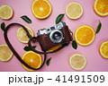 Vintage Camera on Orange Lemon Leaves Citrus 41491509