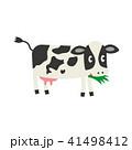 草を食べてる牛 41498412