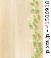 壁 ナチュラル 葉っぱのイラスト 41500918