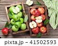 リンゴ りんご アップルの写真 41502593