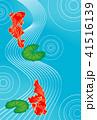 夏 金魚 水流のイラスト 41516139