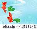 夏 金魚 水流のイラスト 41516143