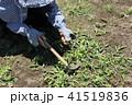 草刈り 41519836