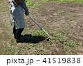 草刈り 41519838