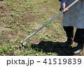 草刈り 41519839