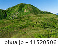 山 雨飾山 笹平の写真 41520506